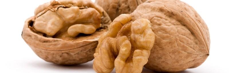 Можно ли кушать грецкие орехи кормящим женщинам