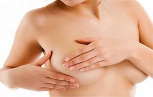 молочные железы у беременных