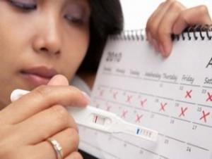 расчет овуляции по календарю