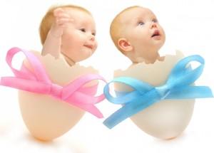 Рассказываем, как забеременеть двойней или близнецами