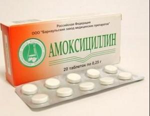 амоксициллин при беременности