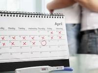 Через какое время после зачатия можно делать тест на беременность и как пользоваться калькулятором для расчета срока?