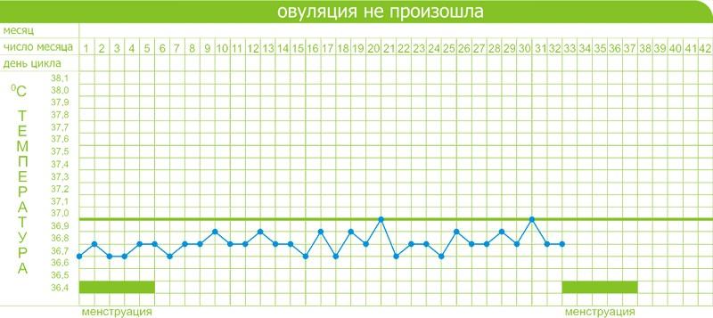 ведение графика базальной температуры